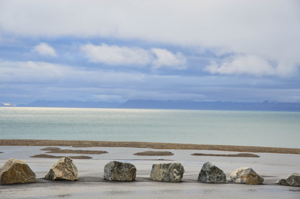 Svalbardting (3/6)