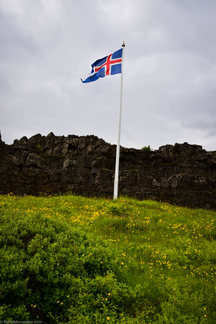Icelandi-7