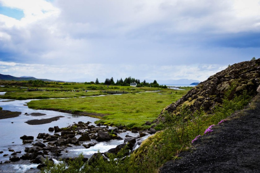 Icelandi